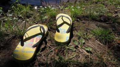 Photo of 10 Most Comfortable Flip Flop